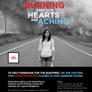 Bushfire Fundraiser – Summer Healing Yoga Mini Retreat